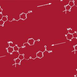 Wissenschaftler verbessern, neue Wege zur überwindung von Resistenzen gezielte Krebs-Behandlungen