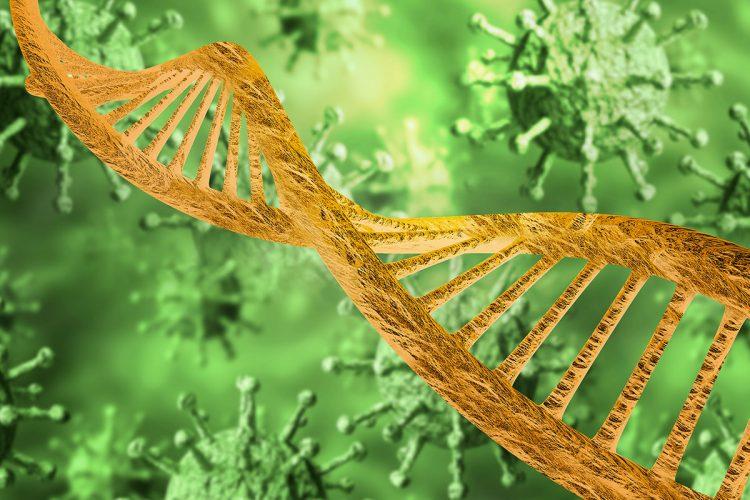 COVID-19 Studie untersucht die Genetik des gesunden Menschen entwickeln eine schwere Krankheit