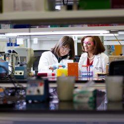 5 Millionen US-Dollar unterstützt Forschung zu vernachlässigten tropischen Krankheiten