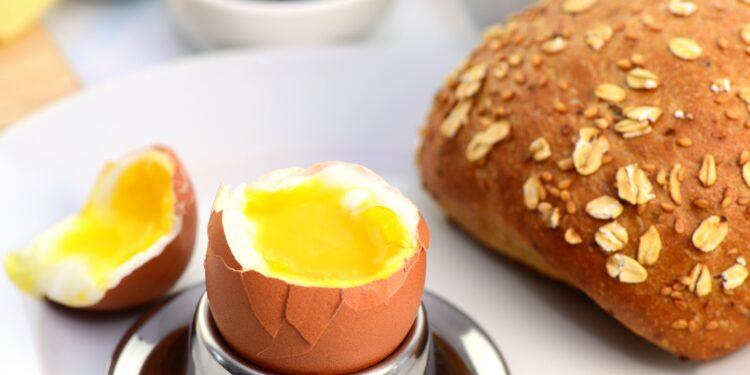 Cholesterinspiegel zu hoch: Muss man wirklich auf das Frühstücksei verzichten? – Naturheilkunde & Naturheilverfahren Fachportal