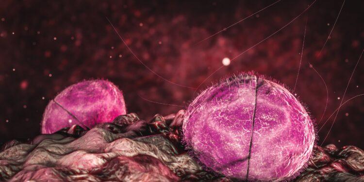 Meningitis und Sepsis: Was Meningokokken so widerstandsfähig macht – Naturheilkunde & Naturheilverfahren Fachportal