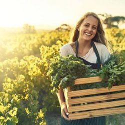 Pflanzenbasierte Ernährung: Laut einer Studie sind Vegetarier schlanker als Fleischesser