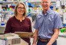 Engineered T-Zellen für Typ-1-diabetes näher zur Klinik