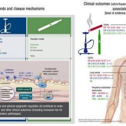 Erster Vergleich der Gefahren von Tabak-Zigaretten, e-Zigaretten und wasserpfeifen