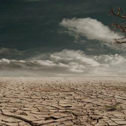 Einsamkeit erscheint nicht erhöhen während der Pandemie: Studie