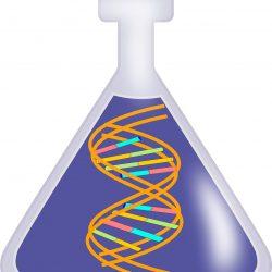 Forscher entdecken eine neuartige protein -, welche Laufwerke Fortschreiten