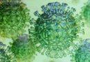 Erklärer: was ist das neue coronavirus Speichel-test, und wie funktioniert es?