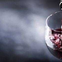 Alkohol: Diese Menge verbessert die kognitive Funktion – Naturheilkunde & Naturheilverfahren Fachportal