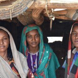 Weibliche Beschneidung: warum Verbote sind kein Allheilmittel