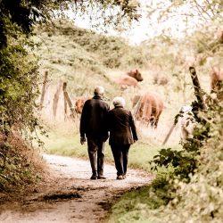 Wenn Sie 84: Was sollte das Leben Aussehen, wenn wir älter werden?