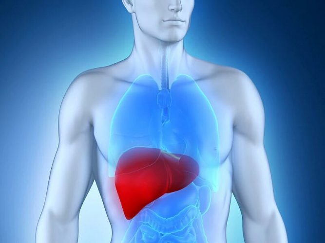 Virale Exposition Signatur prognostiziert hepatozellulären Karzinom