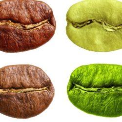Geheimtipp grüner Kaffee: Antibakteriell und antioxidativ – Naturheilkunde & Naturheilverfahren Fachportal