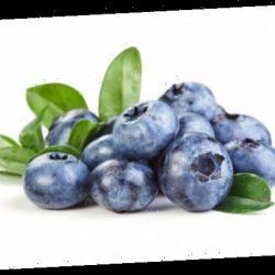 Blaubeeren-Inhaltsstoff zur Behandlung chronischer Entzündungen – Naturheilkunde & Naturheilverfahren Fachportal