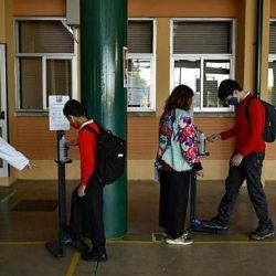 Corona-Pandemie: Es wird nicht den einen Impfstoff für Deutschland geben
