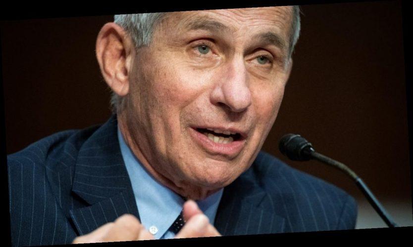 Anthony Fauci: Corona wird nicht mehr lange eine Pandemie sein