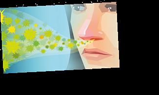 Wenn aus einem allergischen Schnupfen mehr wird