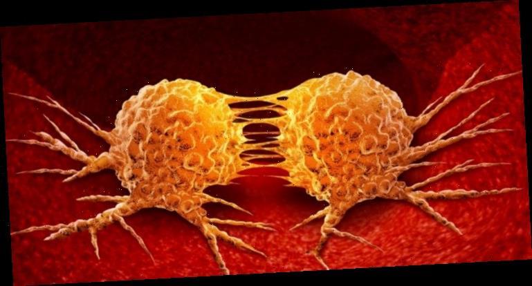 Wie Krebs Metastasen bildet – Neue Ansätze um Krebsausbreitung zu stoppen – Heilpraxis