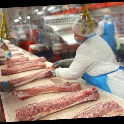 Corona-Ausbruch in Allgäuer Schlachthof: 83 Infizierte