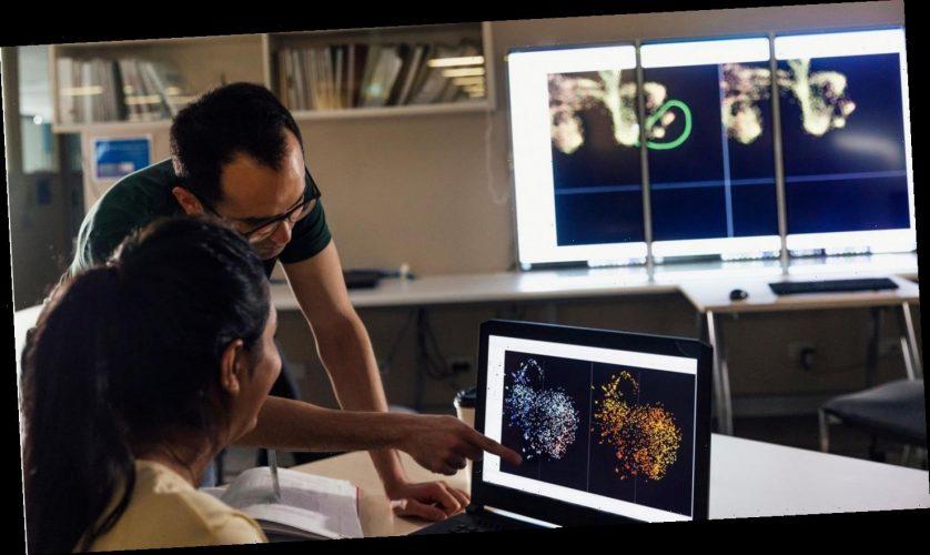 Forscher können Krankheiten statistisch vorhersagen – für Estland wurden erste Analysen getestet
