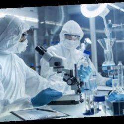 Lebensgefährliche Pilzinfektion mit Kombination bestehender Medikamente therapierbar – Heilpraxis